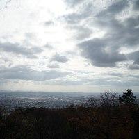 気忙しく・・・ 12月14日(金)曇り