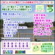 [古事記]第293回【算太クンからの挑戦状2017】(文学・歴史)
