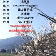 3/13~3/19タイムランチのお知らせ