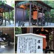 第42回 京の夏の旅・・・下鴨神社