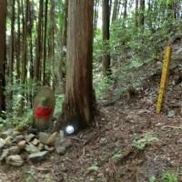 山歩き3時間コース(一部外環を歩く)