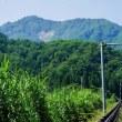 フジロック、湯沢ICから苗場へ向かう途中に左手に見えるかも。神立~三俣の間に見える、♡の岩肌。