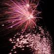 ◆雨中の大花火大会   (^O^)/~~~♪