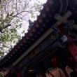 香港・マカオ旅行 黄大仙祠