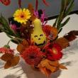 今週のお花~♪10月ハロウイン