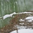 雪景色3・・・【いな】