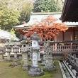 奈良公園ウォーキング🚶