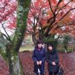 国宝・彦根城へ・・・紅葉に感動