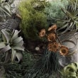フェイクグリーンの多肉植物・ハンギングイメージ