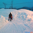 地方都市では雪害で大変です