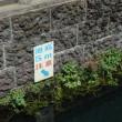 忍野八海、江の島、横須賀ツー 1