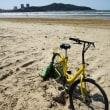 中国のシエアー自転車