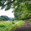 武蔵野公園 その2