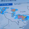8月19日(土) 洪水警報、大雨雷注意報
