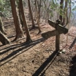 倉戸山・鷹ノ巣山攻略戦 3