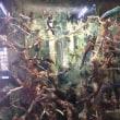 サラワク博物館ーボルネオの豊かな自然