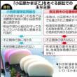 小田原蒲鉾商標裁判のゆくへ