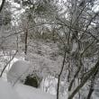 宝満山雪景色と山頭火