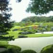 委員会の県外視察で鳥取県と島根県を視察しました。