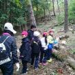 台風一過に、学校林活動!