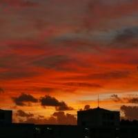 真っ赤な夕日!