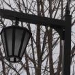 公園の街灯