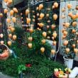 飾りが吊るし柿になりました!