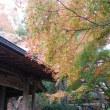 本日は西国三十三観音巡りで番外札所・花山院菩提寺へ。握手ができる幸福の七地蔵に感激。おみくじは吉。花山法皇の菩提寺だけあって421mからの展望は最高。向かいに有馬富士(374m)。