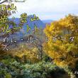 創楽 低山なのに山名に「岳」がつく 富山の山より祖父岳!
