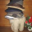 僕の帽子掛けは「駱駝の縫いぐるみ」
