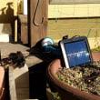 人感ソーラーライトを購入