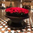 ハイアットリージェンシーホテルのクリスマスツリー 🎄 2018年12月16日