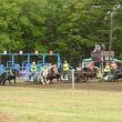 馬と触れ合おう! BanEi Horse Racing