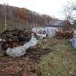 この冬の薪はすべて納屋に、完了