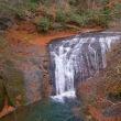 「白扇の滝」の落ち葉です ♪