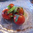 慌てて捥いだプチトマト