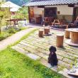 和歌山のカフェ くらとくり