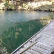 ホームへ降臨 冬の中休みのなごみの湖