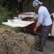新潟・十日町まつだいで収穫祭<2>