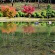 西条市の本谷温泉の紅葉がピークのようでした