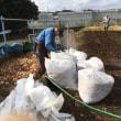 来年用の枯葉堆肥の準備
