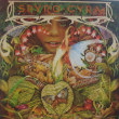 70年代から80年代初期の我が家の地味なレコード紹介シリーズ、その一