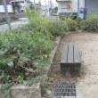 近隣公園の草刈りと清掃(エコアクション活動)