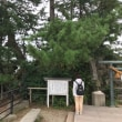 道の駅「雨晴」「ひみ番屋街」