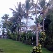 フローレンス島