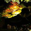 『ライトアップ』 城山庵