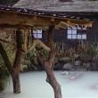 「外国人が選ぶ2019年冬 日本の温泉ランキング」  を見て。