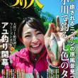 月刊:つり人 7月号に碓氷川が・・・