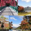 今年の旅行は支笏湖