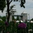 ぐんまフラワーパーク(ダリア)